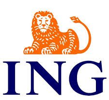 ING center of excellence trainers coach-the-coach